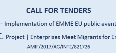 Call for tenders. Activity 6.5_ E.M.M.E Project